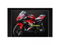 Viper 300 new model